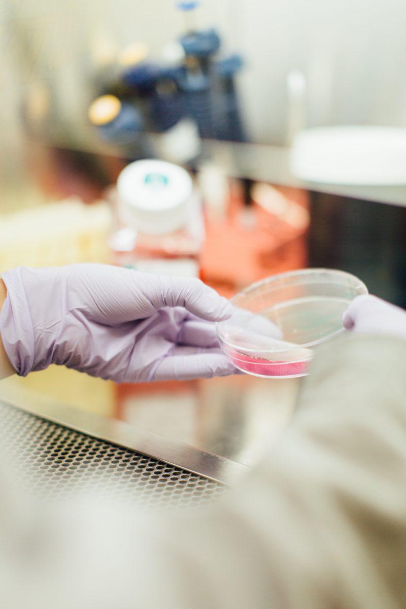 klinisk forskning med handske