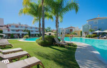 pool och palm, ett härligt ställe att spendera på semesterledighet
